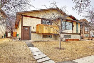 Photo 3: 1137 Berkley Drive NW in Calgary: Beddington Heights Semi Detached for sale : MLS®# A1136717