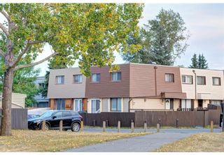 Main Photo: 106 12 BLACKTHORN Bay NE in Calgary: Thorncliffe Row/Townhouse for sale : MLS®# A1124562