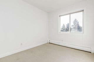 Photo 24: 401C 4455 Greenview Drive NE in Calgary: Greenview Apartment for sale : MLS®# A1052674