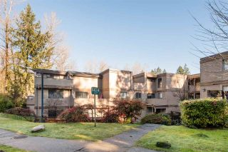 """Photo 1: 204 9145 SATURNA Drive in Burnaby: Simon Fraser Hills Condo for sale in """"MOUNTAINWOOD"""" (Burnaby North)  : MLS®# R2535419"""