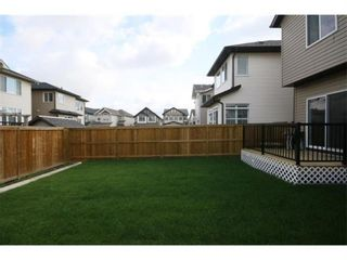 Photo 31: 249 Skyview Shores Manor NE in Calgary: Skyview Ranch Detached for sale : MLS®# A1040770