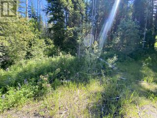 Photo 19: LOT 4 WILCOX ROAD in Forest Grove: Vacant Land for sale : MLS®# R2595645