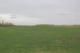 Photo 9: On Highway 567 in Rural Rocky View County: Rural Rocky View MD Land for sale : MLS®# C4233359