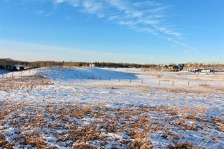 Photo 3: 262031 Poplar Hill Drive in Rural Rocky View County: Rural Rocky View MD Land for sale : MLS®# A1061285
