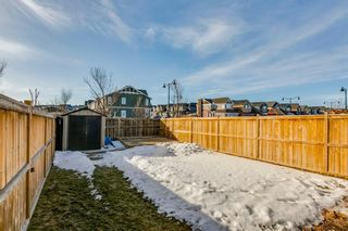 Photo 46: 209 Auburn Meadows Place SE in Calgary: Auburn Bay Semi Detached for sale : MLS®# A1072068
