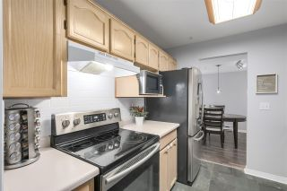 """Photo 9: 202 22275 123 Avenue in Maple Ridge: West Central Condo for sale in """"MOUNTAINVIEW"""" : MLS®# R2220581"""