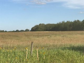 Photo 12: 57525 Rg Rd 214: Rural Sturgeon County Rural Land/Vacant Lot for sale : MLS®# E4237624