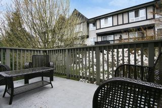 "Photo 18: 53 6651 203 Street in Langley: Willoughby Heights Townhouse for sale in ""SUNSCAPE"" : MLS®# R2049263"