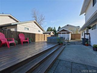 Photo 19: 722 Cameo St in VICTORIA: SE High Quadra House for sale (Saanich East)  : MLS®# 725052
