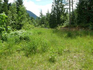 Photo 6: 23685 AMERICAN CREEK Road in Hope: Hope Center Land for sale : MLS®# R2176452