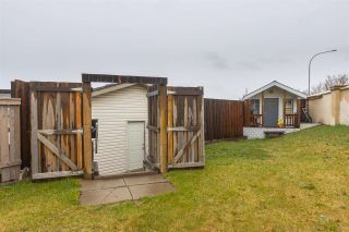 Photo 48: 4 BETHEL Drive: Sherwood Park House for sale : MLS®# E4243058