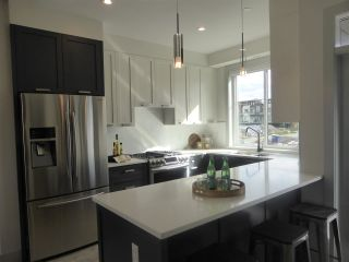 Photo 3: 34 188 WOOD STREET in New Westminster: Queensborough Condo for sale : MLS®# R2118596