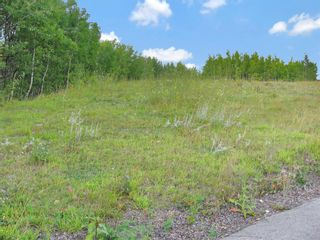 Photo 2: 24180 Meadow Drive in Rural Rocky View County: Rural Rocky View MD Residential Land for sale : MLS®# A1098296