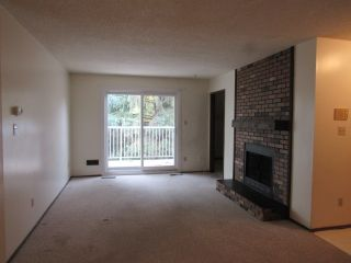Photo 4: 301, 24 Alpine Place in St. Albert: Condo for rent