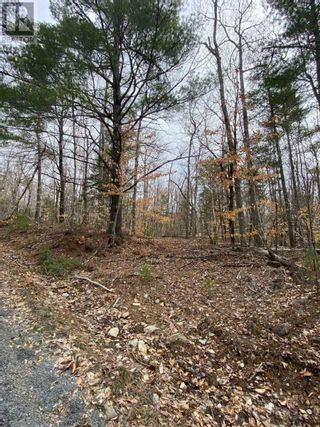 Photo 7: Lot Sunhaven Drive in Labelle: Vacant Land for sale : MLS®# 202108694