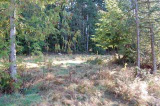 Photo 2: 9850 LINDSAY Terrace in Mission: Mission BC Land for sale : MLS®# R2331849