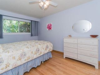 Photo 2: 62 Clancy Drive in Toronto: Don Valley Village House (Bungalow-Raised) for sale (Toronto C15)  : MLS®# C3629409