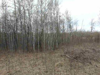Photo 4: 81 15065 TWP RD 470: Rural Wetaskiwin County Rural Land/Vacant Lot for sale : MLS®# E4240270