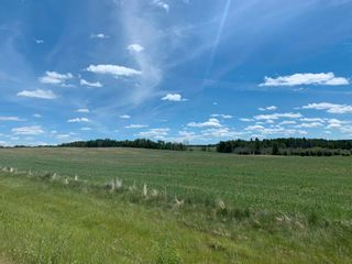 Photo 3: TWP 482 RR 32: Rural Leduc County Rural Land/Vacant Lot for sale : MLS®# E4249796