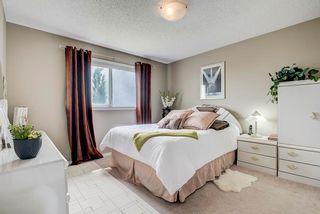 Photo 26: 3441 28 Street in Edmonton: Zone 30 House for sale : MLS®# E4248007