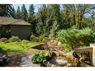 Photo 37: 23387 50 Avenue in Langley: Salmon River House for sale : MLS®# R2562175
