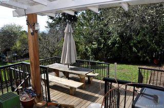 Photo 17: 3552 Calumet Ave in VICTORIA: SE Quadra House for sale (Saanich East)  : MLS®# 812576