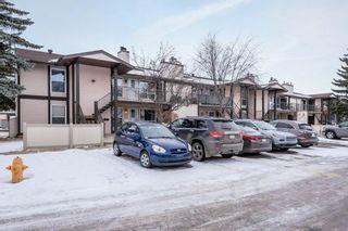 Photo 43: 2047 SADDLEBACK Road in Edmonton: Zone 16 Carriage for sale : MLS®# E4225755