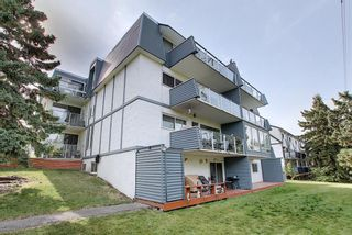 Photo 33: 1 312 CEDAR Crescent SW in Calgary: Spruce Cliff Apartment for sale : MLS®# A1036896