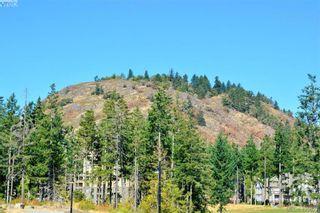 Photo 37: 314 1400 Lynburne Pl in VICTORIA: La Bear Mountain Condo for sale (Langford)  : MLS®# 840538