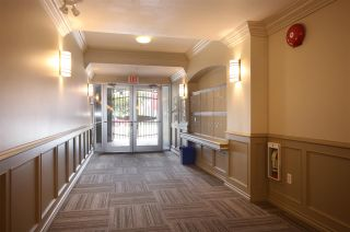"""Photo 13: 306 5629 DUNBAR Street in Vancouver: Dunbar Condo for sale in """"West Pointe"""" (Vancouver West)  : MLS®# R2051886"""