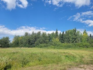 Photo 5: HWY 29 RR 175: Rural Lamont County Rural Land/Vacant Lot for sale : MLS®# E4260440