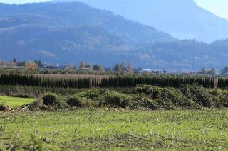 Photo 8: 46680 CHILLIWACK CENTRAL Road in Chilliwack: Chilliwack E Young-Yale Land for sale : MLS®# R2510955