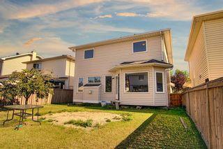 Photo 35: 175 Coral Keys Villas NE in Calgary: Coral Springs Detached for sale : MLS®# A1143860