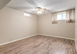 Photo 18: 3135 Rae Crescent SE in Calgary: Albert Park/Radisson Heights Detached for sale : MLS®# A1139656