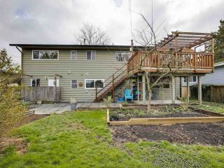 Photo 32: 4453 54A Street in Delta: Delta Manor House for sale (Ladner)  : MLS®# R2557286
