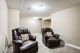 Photo 28: 173 Martinglen Way NE in Calgary: Martindale Detached for sale : MLS®# A1144697