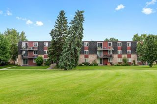 Photo 3: 17B 80 Galbraith Drive SW in Calgary: Glamorgan Apartment for sale : MLS®# A1009732