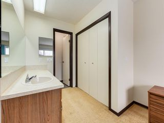 Photo 20: 141 Marquis Place SE: Airdrie Detached for sale : MLS®# A1063847