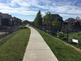 Photo 48: 4419 Suzanna Crescent in Edmonton: Zone 53 House for sale : MLS®# E4211290