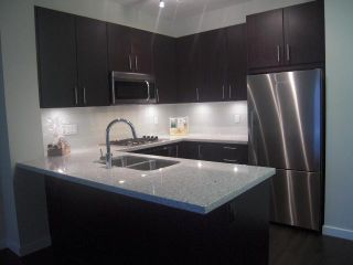 """Photo 1: 301 119 W 22ND Street in North Vancouver: Central Lonsdale Condo for sale in """"Anderson Walk"""" : MLS®# V936339"""