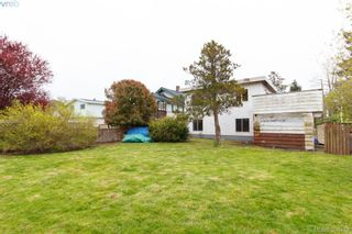 Photo 13: 1940 Carrick St in VICTORIA: SE Camosun House for sale (Saanich East)  : MLS®# 784685