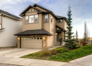 Photo 39: 165 KINCORA GLEN Rise NW in Calgary: Kincora Detached for sale : MLS®# A1045734