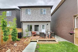 Photo 46: 139 Howse Lane NE in Calgary: Livingston Detached for sale : MLS®# A1118949