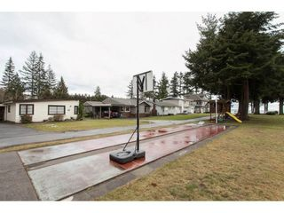 Photo 17: 14 2250 CHRISTOPHERSON ROAD in South Surrey White Rock: Home for sale : MLS®# R2139372