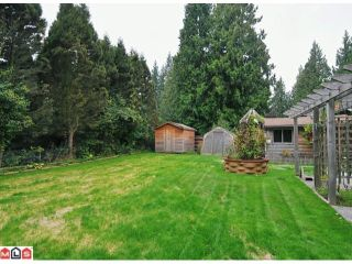 """Photo 10: 20508 42A Avenue in Langley: Brookswood Langley House for sale in """"BROOKSWOOD"""" : MLS®# F1124582"""