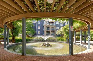 Photo 18: 206 3075 PRIMROSE LANE in Coquitlam: North Coquitlam Condo for sale : MLS®# R2589499