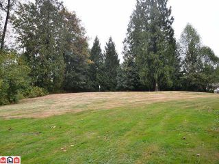 Photo 10: 21946 100TH Avenue in Langley: Fort Langley House for sale : MLS®# F1223720