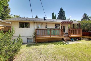 Photo 27: 10443 Wapiti Drive SE in Calgary: Willow Park Detached for sale : MLS®# A1128951