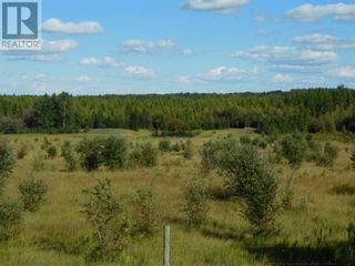 Photo 11: 35 Acres For Sale