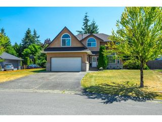 """Photo 1: 4670 221 Street in Langley: Murrayville House for sale in """"Upper Murrayville"""" : MLS®# R2601051"""